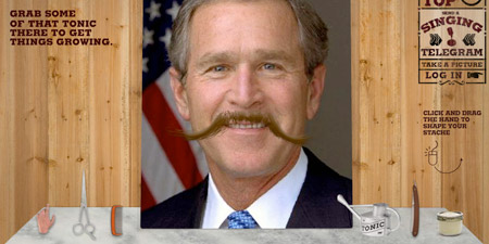 moustachebush